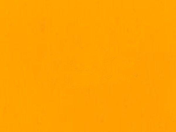 Lakier ELAPOR Color - do Elaporu - pomarań