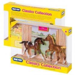 Koń chepmion Foals