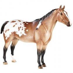 Koń APP Indian Pony