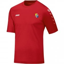 UKS koszulka TEAM krótkirękaw