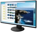 EIZO EV2451-BK, LED HDMI, DisplayPort, DVI, VGA