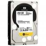 Western Digital WD2503ABYZ 250 GB WD RE, Serial ATA/600, 24/7