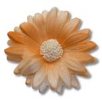 HOKUS - Margaretka 10 szt.  pomarańczowa