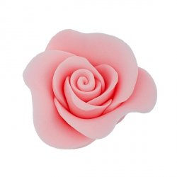 Róża Mini Max 20 szt. różowa