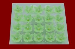 Lilijka pistacjowa - dekoracja cukrowa