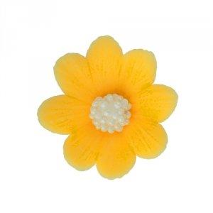 HOKUS - Miłek żółty 8 x 10 szt.
