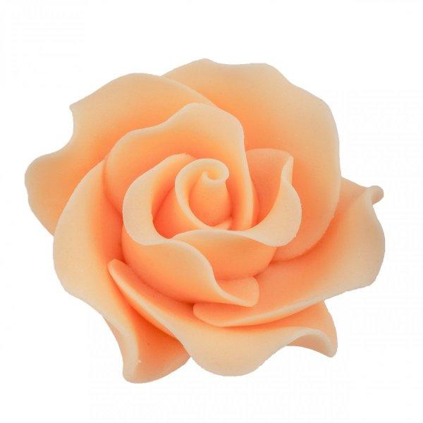 Róża Max 6 szt. herbaciana