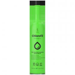 Liquid Chlorofil, DuoLife Chlorofil, 750 ml