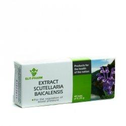 Scutellaria Baicalensis Extract, 40 tbl