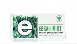 Eukafilipt, Wyciąg z Eukaliptusu, 20 tabletek