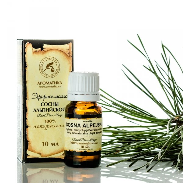 Alpine Pine Essential Oil, Aromatika