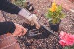 Wiosenne prace w ogrodzie. W te sprzęty musisz się zaopatrzyć!