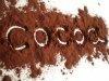 Kakao alkalizowane - zaw. tłuszczu 10-12% - prezentacja produktu