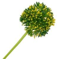 Gałązka Kwiat Cebuli Zieleń-Żółty [ Komplet 10szt ]