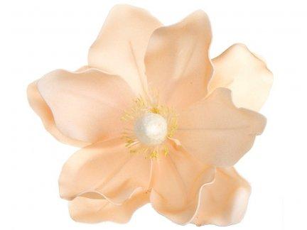 Magnolia Łosoś [Komplet - 20 Sztuk]