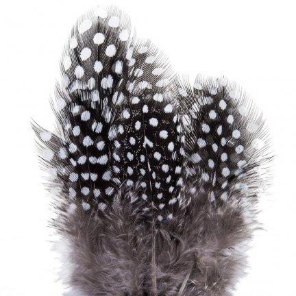 Piórka Przepiórcze Krótkie Czarne W Kropki Białe Komplet