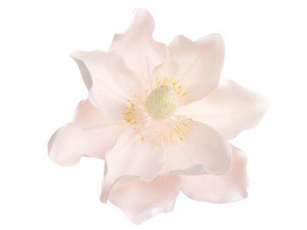 Magnolia Pudrowy Róż [Komplet - 20 Sztuk]