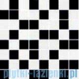 Ceramika Color Java czarno-biała mozaika ścienna 25x25