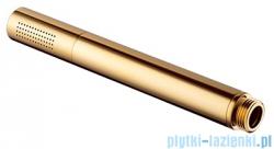 Omnires słuchawka prysznicowa 1-funkcyjna złota Microphone-RGL
