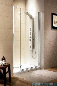 Radaway Drzwi wnękowe Fuenta DWJ 120 lewe szkło grafitowe 381016-05NL