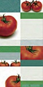 Pamesa Tripoli Tomato Blanco płytka ścienna 25x50