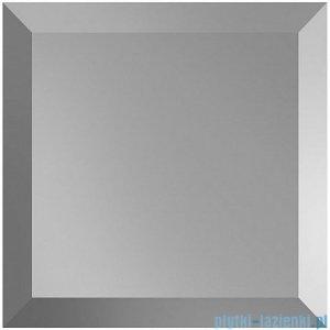 Dunin Vitrum płytka szklana 10x10cm 101