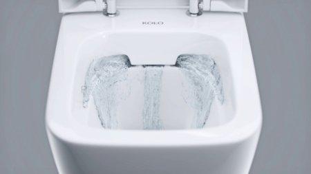 Toaleta bezrantowa - czy warto ?