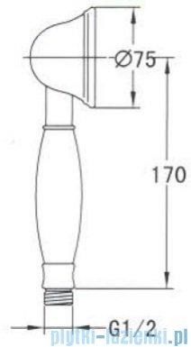 Omnires Art Deco rączka prysznicowa 1-funkcyjna złota ArtDeco-RGL