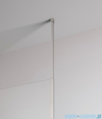 Radaway Euphoria Walk-in V kabina 80cm szkło przejrzyste wspornik dosufitowy