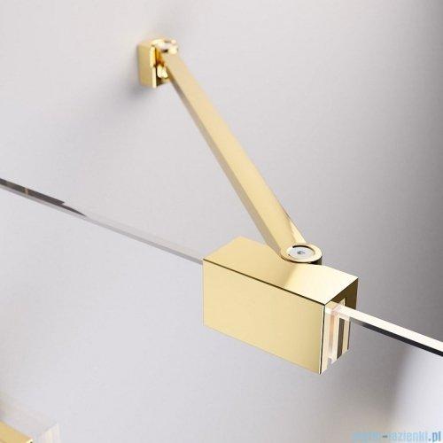 Radaway Essenza Pro Gold Kdj kabina 100x120cm prawa przejrzyste 10097100-09-01R/10098120-01-01
