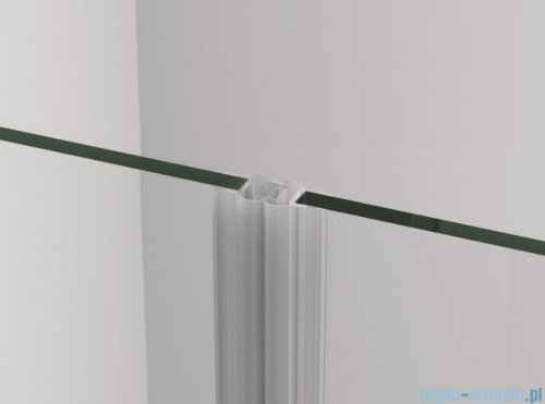 SanSwiss Cadura Gold Line drzwi wahadłowe 110cm dwuczęściowe  CA2C1101207