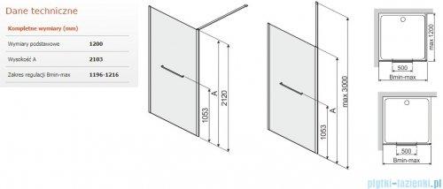 Sanplast Altus PI/ALTIIa kabina walk-in 120x212 cm przejrzyste 600-121-2561-42-401