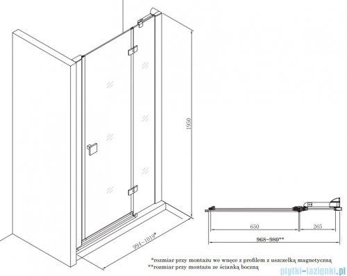 Roca Metropolis drzwi prysznicowe 100cm szkło przejrzyste AMP3410012M