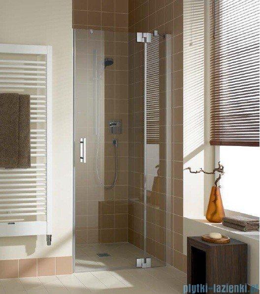 Kermi Filia Xp Drzwi wahadłowe z polem stałym, prawe, szkło przezroczyste, profile srebrne 100x200cm FX1TR10020VAK