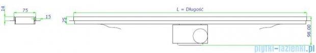 Green Line odpływ liniowy 90 cm ruszt smile + syfon GL900SM