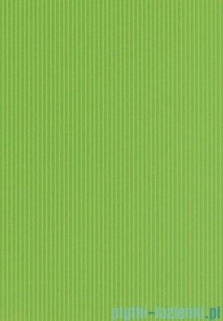 Domino Indigo zielony płytka ścienna 25x36