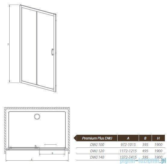Radaway Premium Plus DWJ Drzwi wnękowe 120 szkło przejrzyste 33313-01-01N