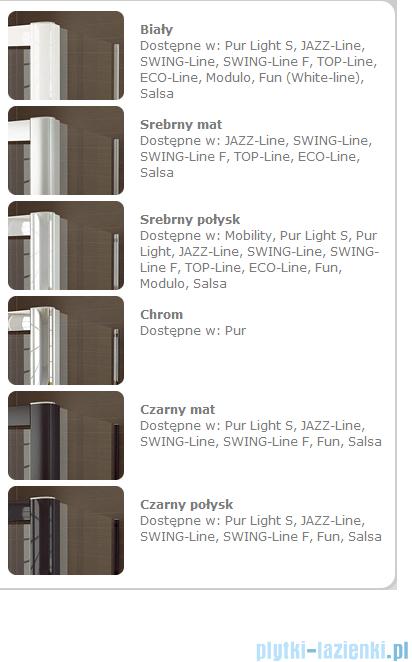 SanSwiss Swing Line F SLF2 Wejście narożne z drzwiami 80cm profil połysk Prawe SLF2D08005007