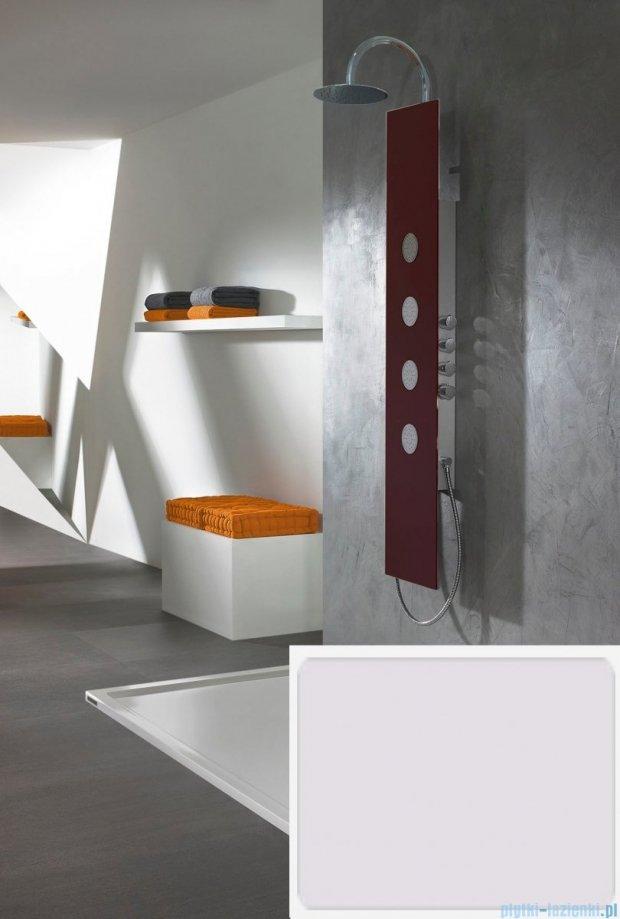 Sanplast Space Line panel prysznicowy PPo/SPACE-150 31x150 cm jasnoszary 631-100-0130-55-000