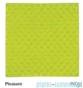 Sealskin Mata antypoślizgowa Pleasure wannowa zielona 40x80cm 315145834
