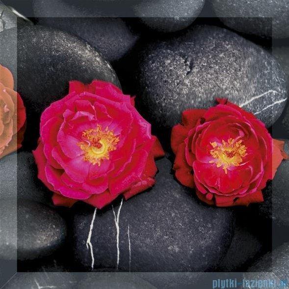 My Way róże uniwersalne inserto szklane 25x25