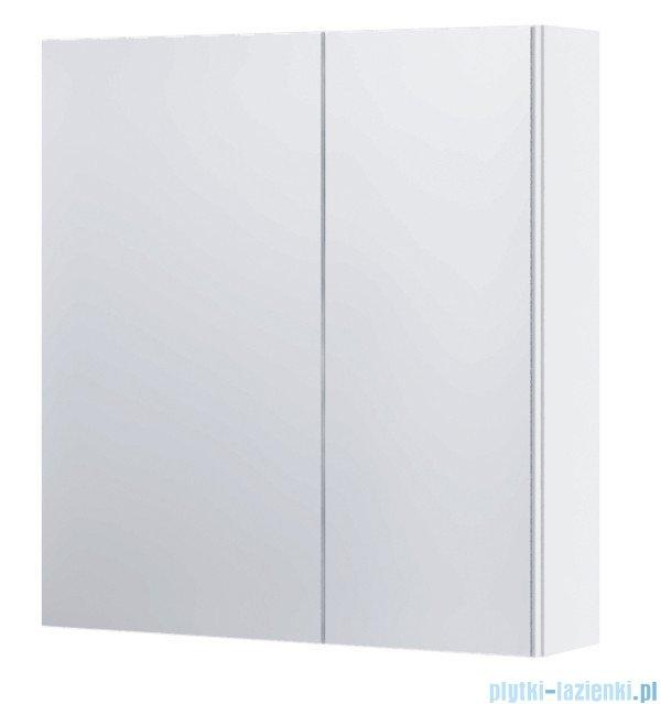 Aquaform Dallas szafka wisząca z lustrem 55cm biały 0408-530115