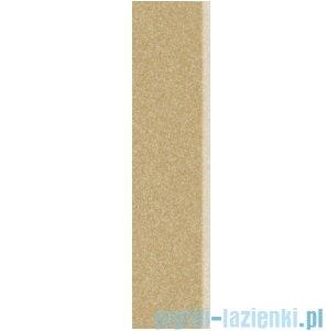Paradyż Arkesia brown satyna cokół 7,2x29,8