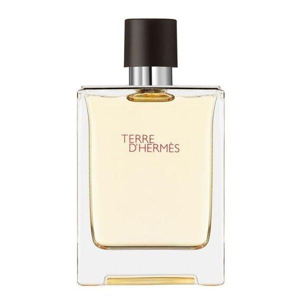 Hermes Terre d'Hermes Eau de Toilette 100 ml