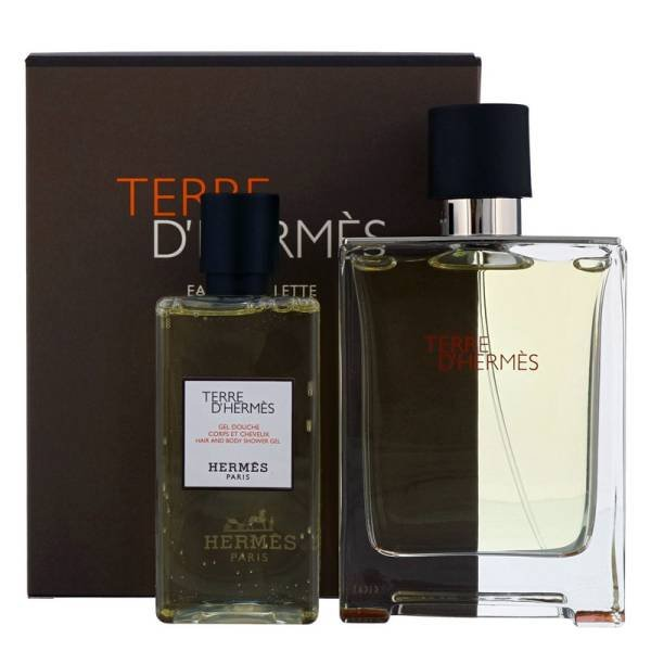 Hermes Terre d'Hermes Set - Eau de Toilette 100 ml + Hair and Body Shower Gel 80 ml