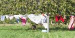 Jak skutecznie prać? Kilka praktycznych porad