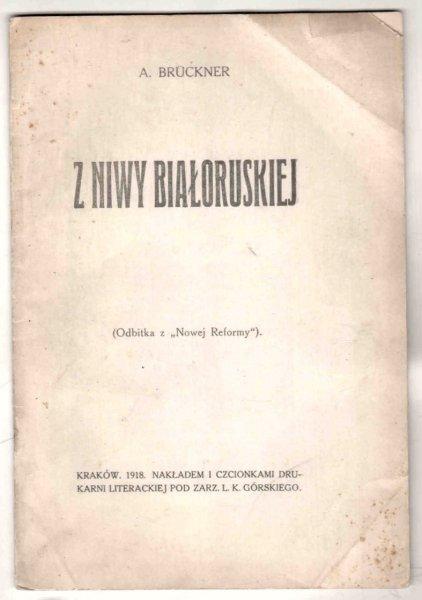 Bruckner Aleksander - Z niwy białoruskiej