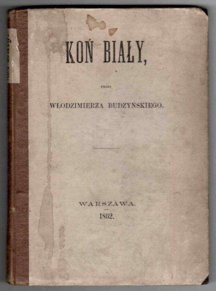 Budzyński Włodzimierz - Koń biały.