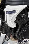 Wloty powietrza osłona chłodnicy + kierunkowskazy LED AIR SCOOPS ERMAX Triumph Speed Triple 2005 - 2007