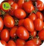 Pomidor szczepiony Dasher